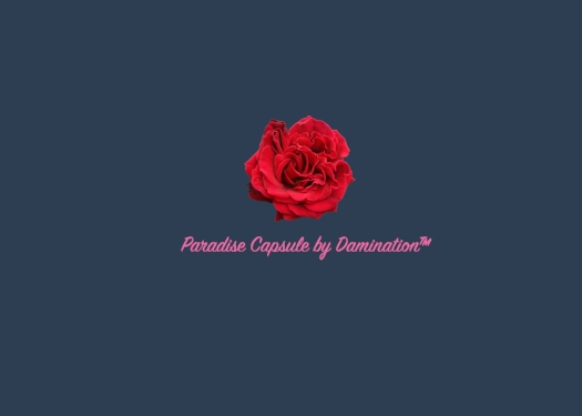 Paradise - A Damination Production