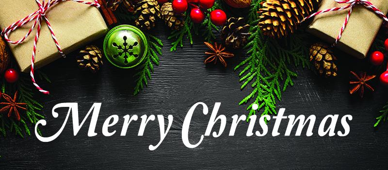 MerryChristmasBanner_Ignite2.jpg