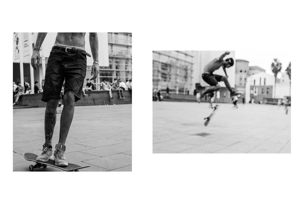 skate diptych.jpg