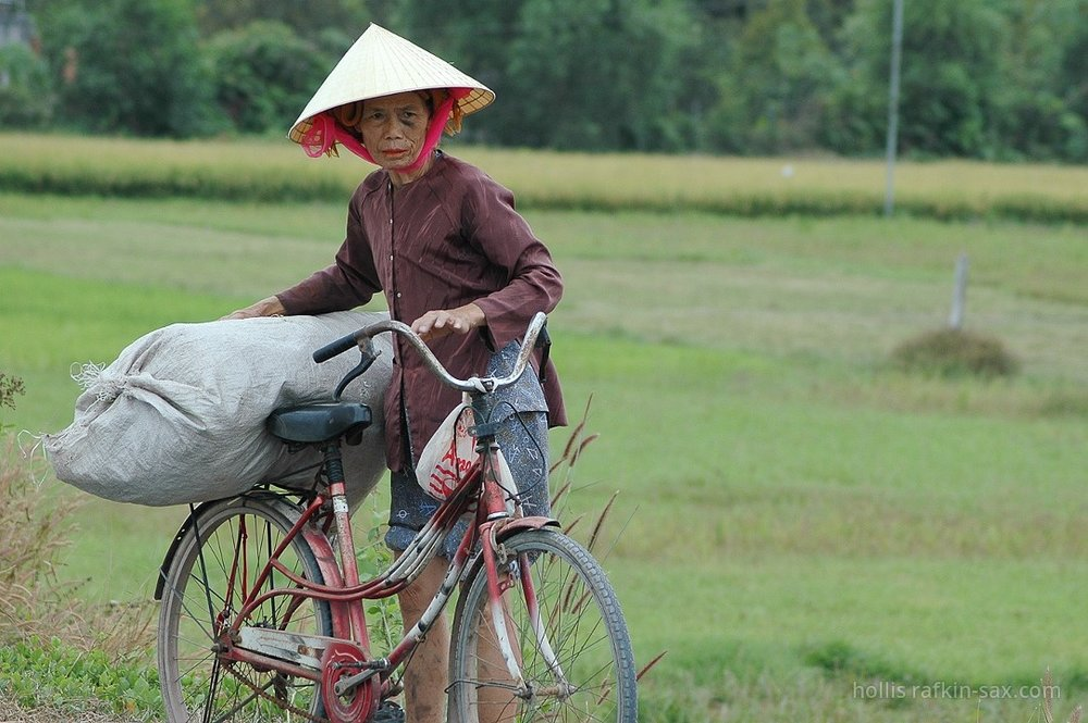 Woman in rice field, Siem Reap, Cambodia