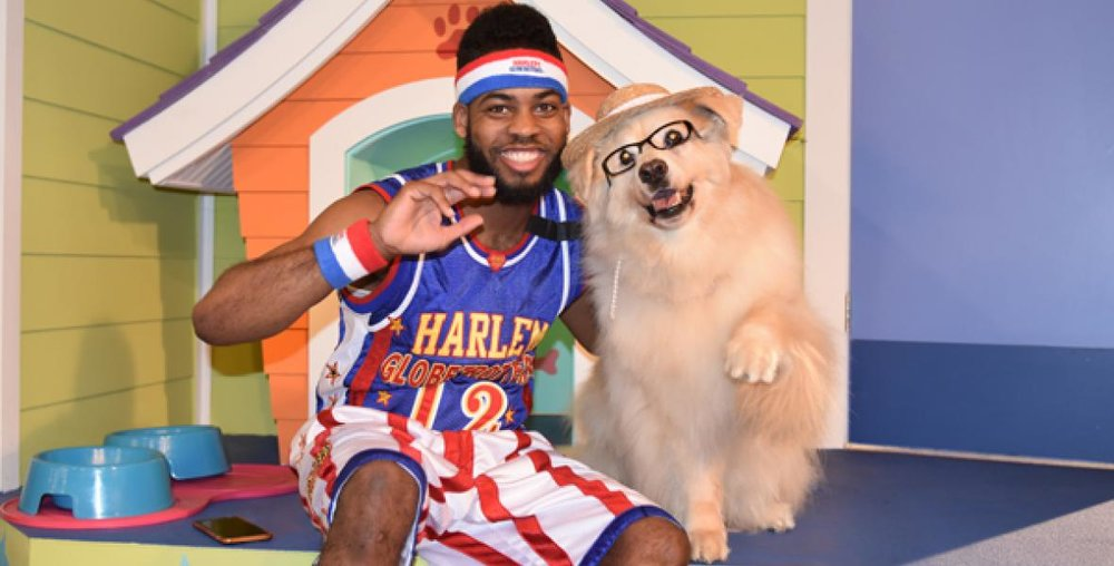 How long must we promote the poisonous fiction that dogs are good at playing basketball?