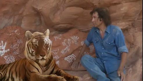 tiger-492x280.jpg