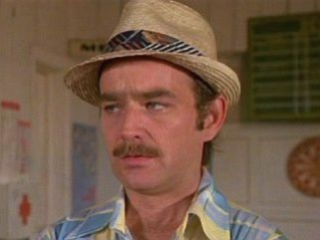 The many hats of Brian Doyle-Murray