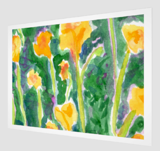 """Yellow & Green Poppies"" fine art print"