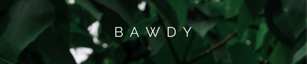 BAWDY Banner.png