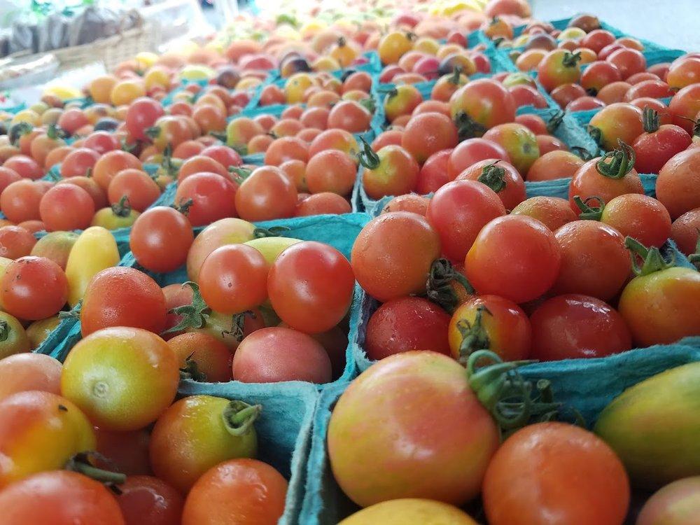 close up tomatoes.jpg
