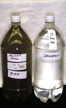 La source d'eau brute de Yellow Quill (à gauche) et l'eau brute de Saskatoon recueillis le même jour