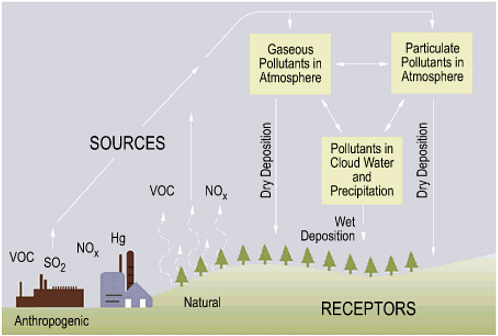 From Source to Acid Rain: How Acid Rain Develops; https://www.nap.edu/openbook/0309089328/xhtml/images/p2000af8eg61001.jpg