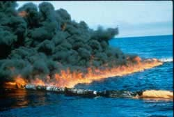 Burning an Oil Spill