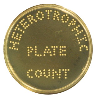 Heterotrophic Plate Count