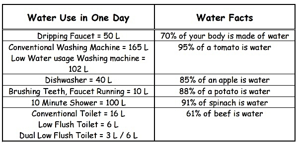 Water Use in One Day and Water Facts