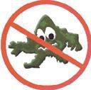 Pas de bactéries