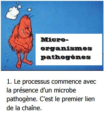 micro-organismes pathogènes
