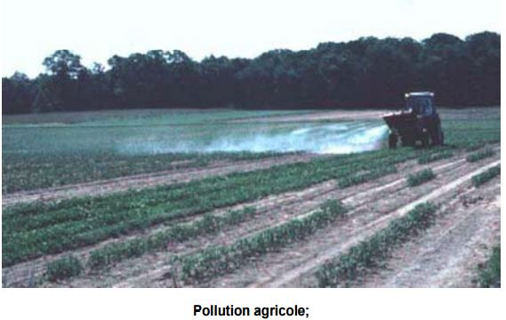 Pollution agricole