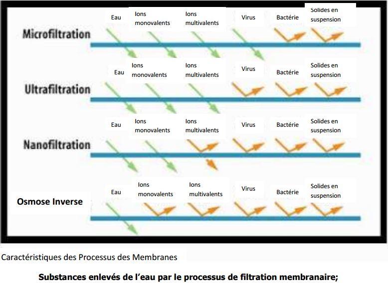 Processus des Membranes