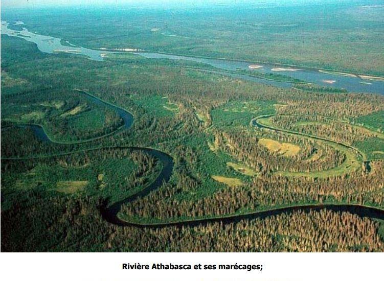 Rivière Athabasca et ses marécages