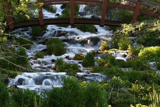 cascade springs.jpg