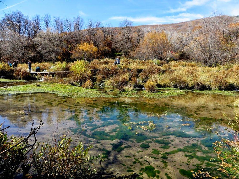 cascade springs trails .jpg