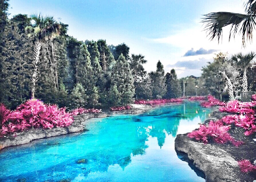 Disney Springs, Florida, USA