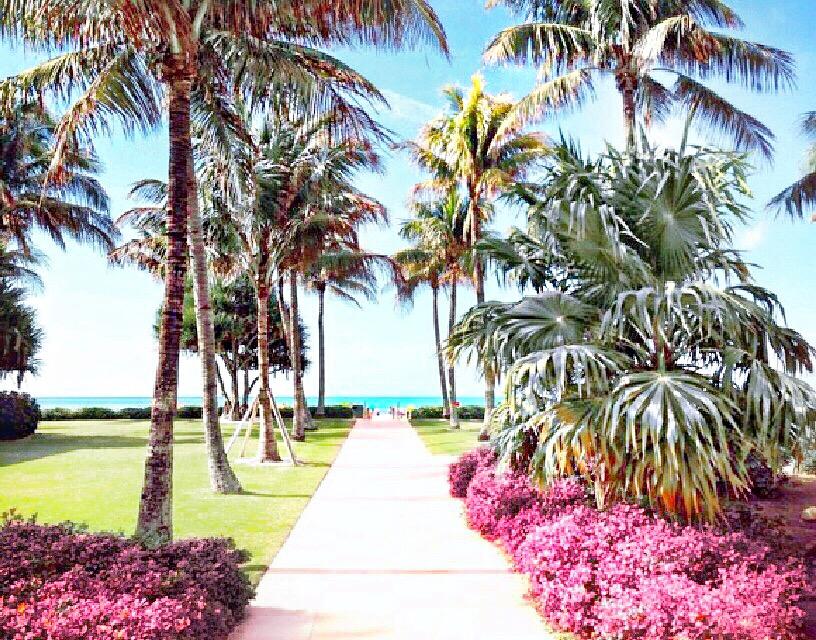 Naples, Florida, USA