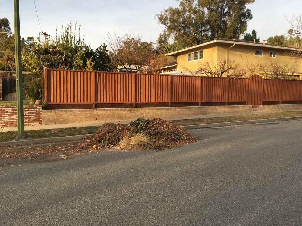 yard waste, Berryessa neighborhood