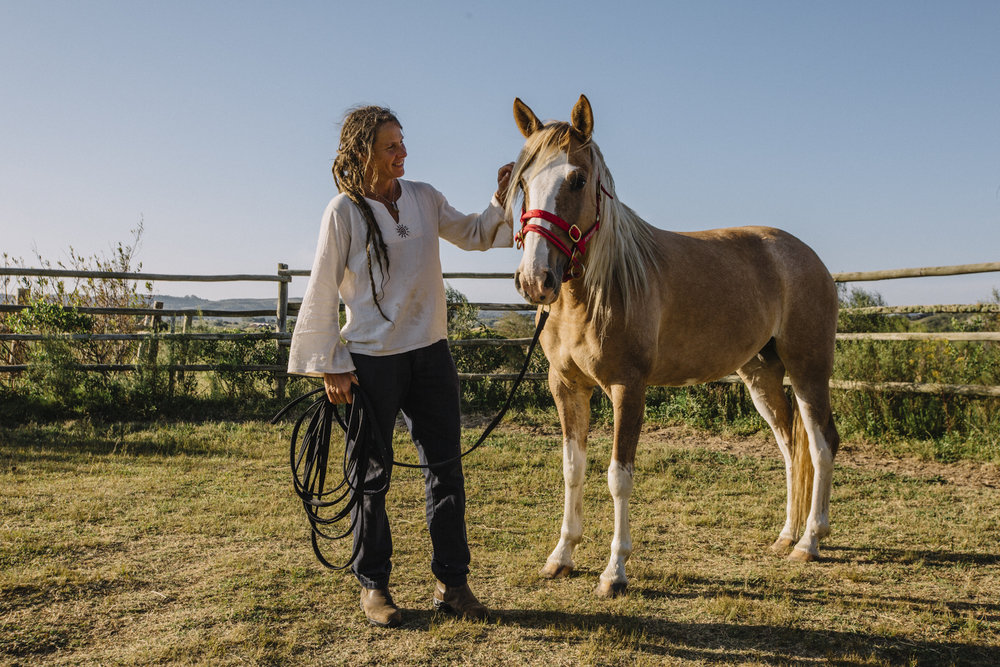 Working with the Horse without Violance.