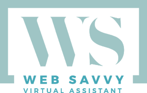 Web Savvy Virtual Assistant