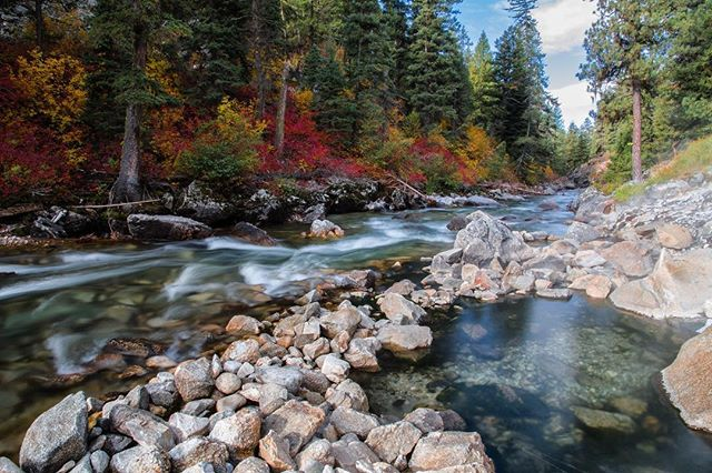 Had a chance to soak at Sacajawea springs last weekend just downstream from the @sawtoothlodge . Enjoying the cool temps and fall colors. • • • • #alwaysgo #idahogram #visitidaho #roamidaho #idahoexplored #onlyinidaho #teamcanon #adventure #mountains #traveling #travels #travelphotography #mkexplore #beautifuldestinations #igmasters #expfilm #adventureculture #folkcreative #agameoftones #aov #vanlife #homeiswhereyouparkit #dashboarddiaries #nomad #wanderlust #explore