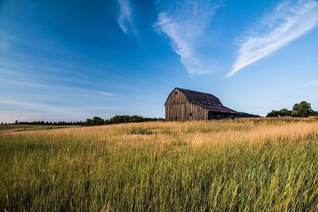 Found this one hanging in the drafts form way back but it's almost the same time of year. Barns grass and blue sky never get old. 🌾 • • • #alwaysgo #idahogram #visitidaho #roamidaho #idahoexplored #onlyinidaho #teamcanon #adventure #mountains #traveling #travels #travelphotography #trip #view #earthpics #beautifuldestinations #igmasters  #welivetoexplore #visualambition #jaw_dropping_shotz #ig_exquisite #mothernature #instanature #earthvacations #discoverglobe #moodygrams #liveauthentic #watchthisinstagood #justgoshoot #creativecommune