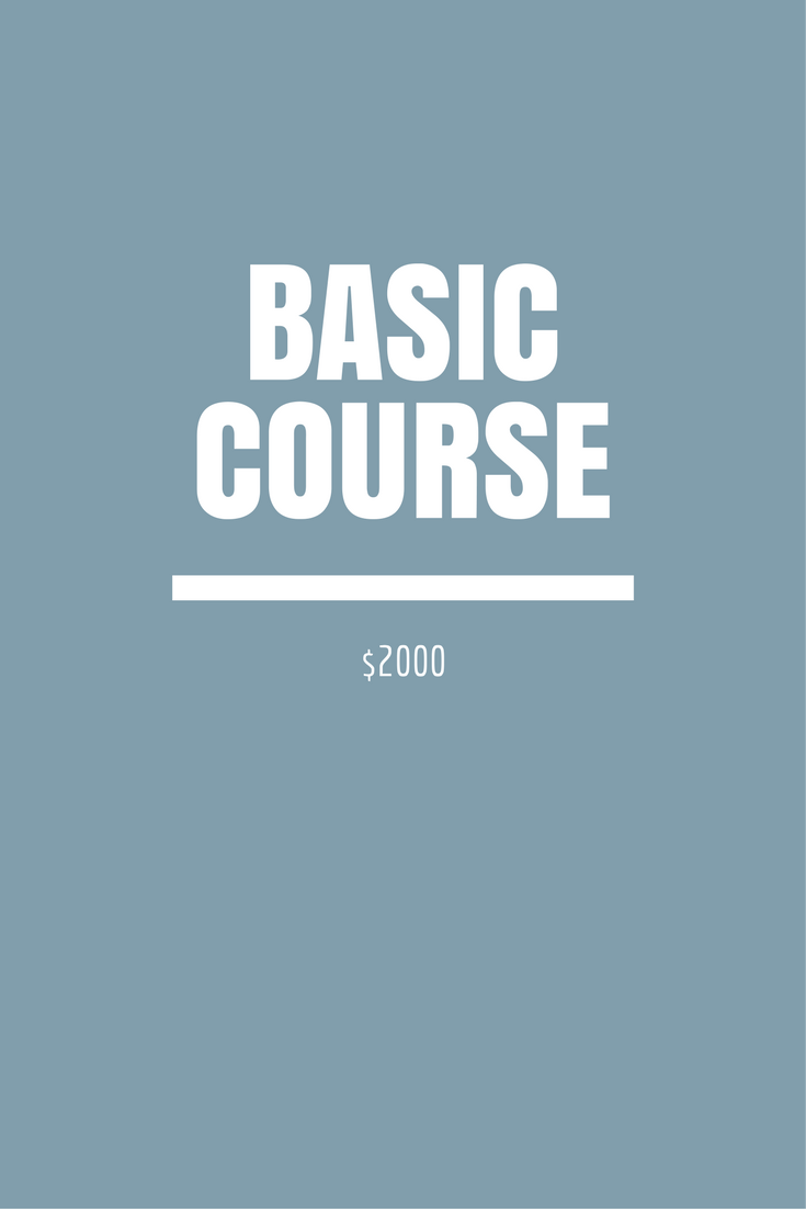 basic course.png