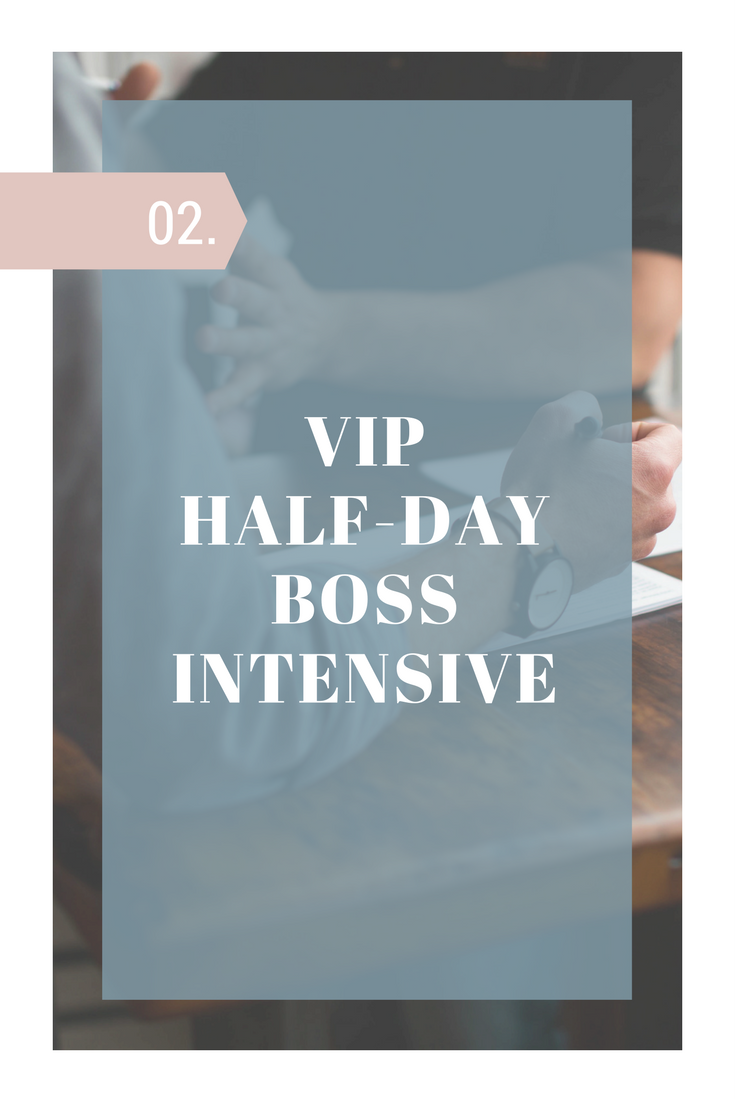 vip half day intensive