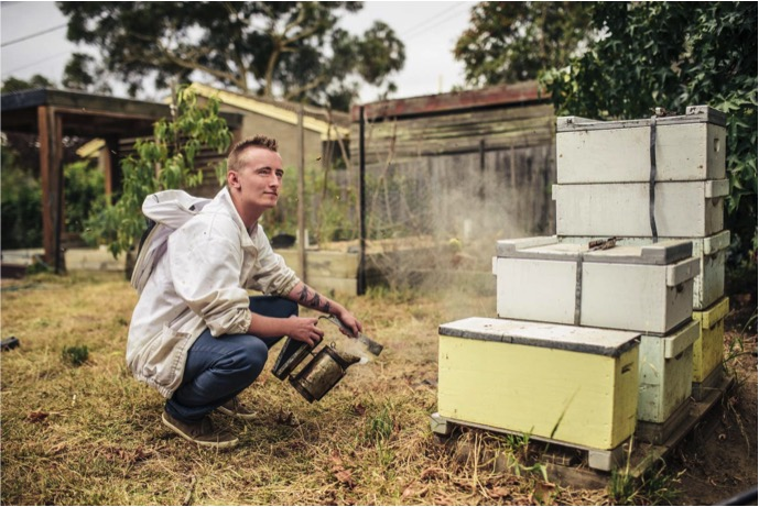 Canberra's youngest urban beekeeper, Mitch Pearce