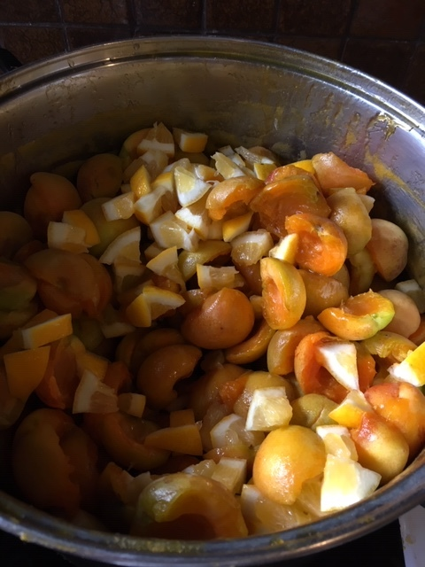 Stewed fruit.JPG