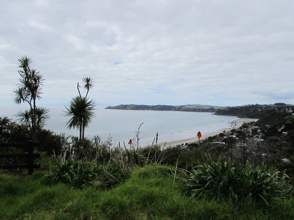 Waiheke's Onetangi Beach, viewed from the roadside above.