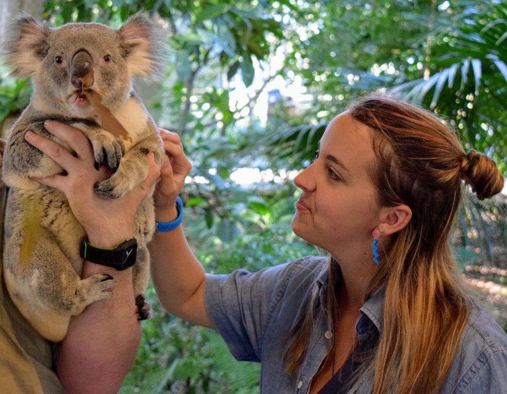 Me and my pal Streudel at Lone Pine Koala Sanctuary in Brisbane, AUS.