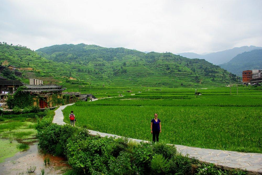 Rice paddies of Guizhou Province, China.