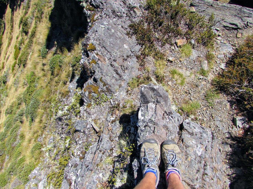 Top of Mt. Lodestone, Kahurangi National Park /// 8 March 2017