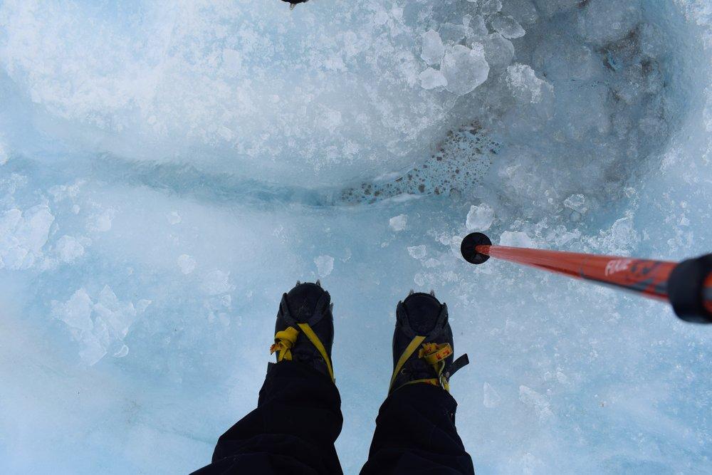 On  Franz Joseph Glacier  /// 11 June 2017