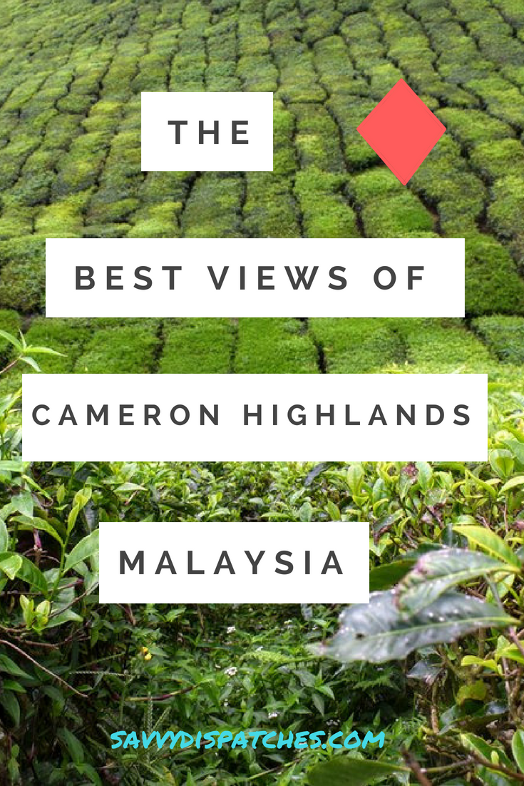 Where to Find the Best Views of the Cameron Highlands, Malaysia