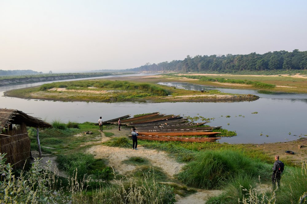 chitwan national park at dawn