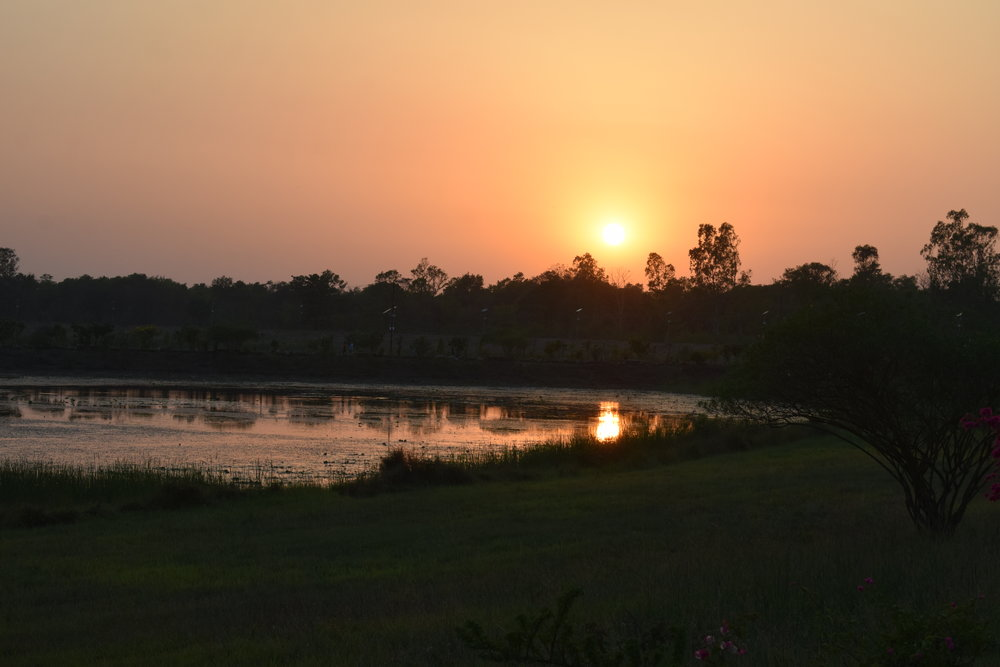 Sunset at Lumbini, across the local wetlands
