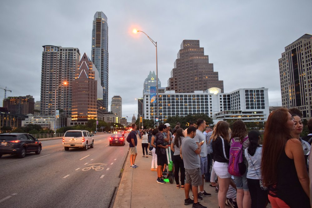 crowds line up along the Congress Avenue bridge in Austin to see the bat colony