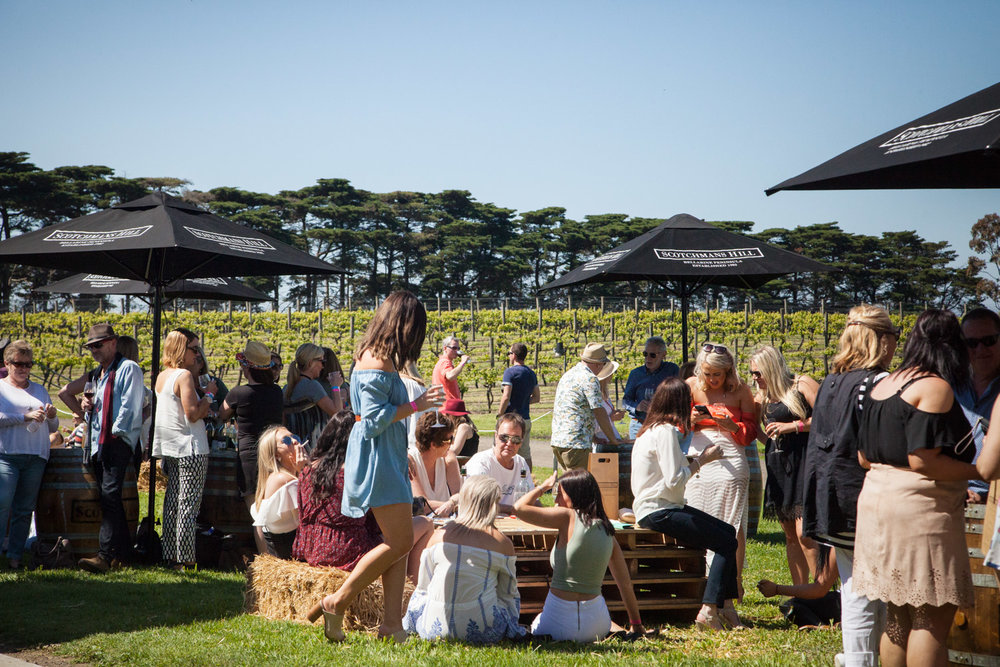 WINE GEELONG / TOAST TO THE COAST