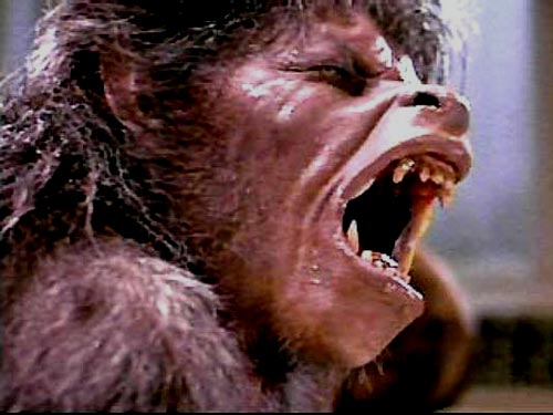 an-american-werewolf-in-london-image
