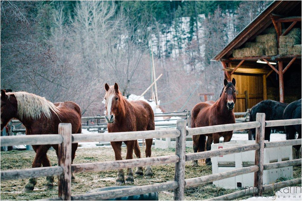 Mountain-Springs-Lodge-wedding-maija-karin-photography_0064.jpg