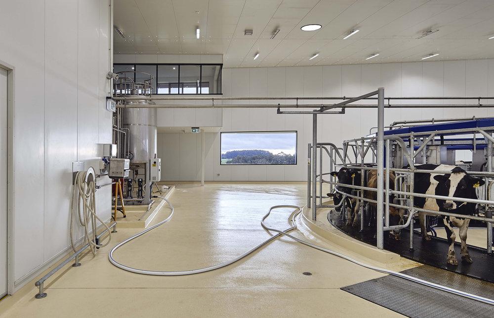 rotary milking machine