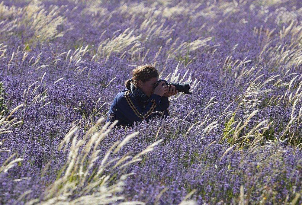 Voyage Photo Provence - Les charmes de la Provence au bout de l'objectif !