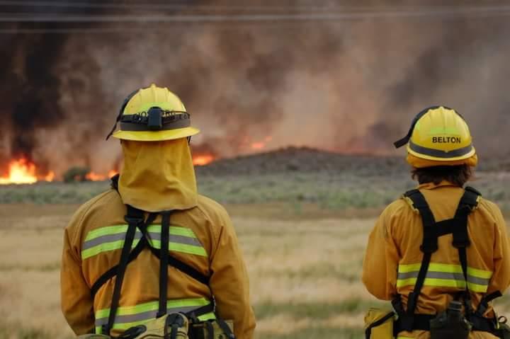 wildland fire.jpg