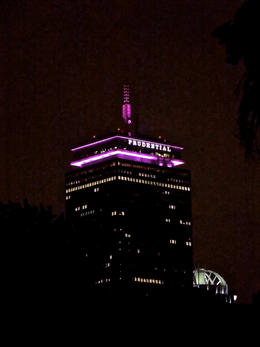 purple Pru.jpg