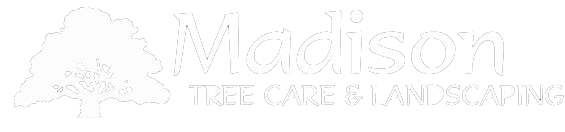 Madison Tree Care and Landscaping